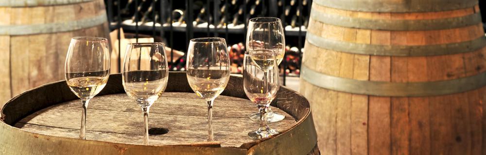 2-cours-oenologie-degustation-vin-mlc-lachardonniere